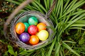 Closeup Of Colorful Easter Eggs In Basket Outddors In Green Grass. Traditional Symbol For Christian  poster