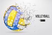 Silhouette Of A Volleyball Ball. Dots, Lines, Triangles, Text, Color Effects And Background On A Sep poster
