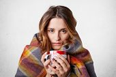 Winter Cold Sickness Concept. Freezing Beautiful Woman Wrapped In Warm Checkered Plaid Blanket, Drin poster