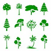 Set Of Green Tree Icons. Silhoutte Of Trees On A White Background. Fruit Tree, Pine Forest, Burgeoni poster