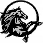 stock photo of bronco  - Graphic Mascot Image of a Mustang Bronco Horse - JPG