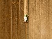 Aerial View Of Combine Harvester Agricultural Machinery Harvesting Wheat Crops In Cultivated Field,  poster