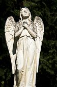 picture of bonnes  - detail of an old marble tombstone at the old cemetery in Bonn - JPG