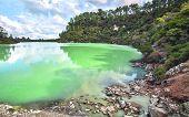 Lake Ngakoro At The Wai-o-tapu Thermal Wonderland In New Zealand. poster