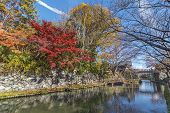 Idyllic Landscape Of Hachiman-bori Canal In Omihachiman, Japan In Autumn Season poster