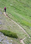 Lonely Nordic Walking