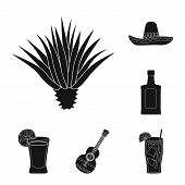 Vector Illustration Of Carnival And National Icon. Collection Of Carnival And Tequila Stock Symbol F poster