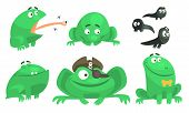 Collection Of Green Frog With Various Emotions, Funny Amphibian Animal Cartoon Character In Differen poster