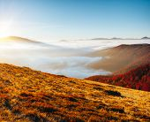 Majestic view of the mountains covered with thick fog. Location place of Carpathian mountains, Ukrai poster