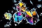 Citric acid crystals in polarized light