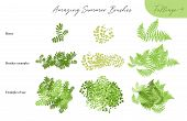 Set Of Summer Vector Foliage Ecology Tropical Brushes - Silhouettes Of Summer Leaves, Foliage Of Tre poster