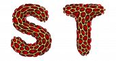 Realistic 3D letters set S, T made of gold shining metal letters. Collection of gold shining metalli poster