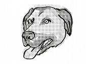 Retro Cartoon Style Drawing Of Head Of An Anatolian Shepherd Dog  , A Domestic Dog Or Canine Breed O poster