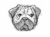 Retro Cartoon Style Drawing Of Head Of A Pug, Chinese Pug Or  Dutch Mastiff  , A Domestic Dog Or Can poster