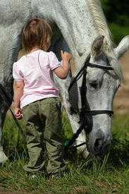 stock photo of big horse  - Little girl make an attempt to establish communication with big grey horse. She offer hand to it