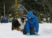 Dog And Child Play In Snow.