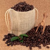 Coffee beans in a burlap sack with olive wood scoop and leaf sprigs over cork background.