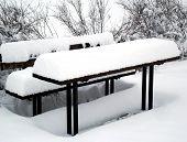 Snow picnick