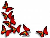 East Timor Flag Butterflies, Isolated On White Background
