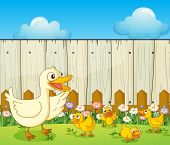 Illustration of a duck and ducklings insde a fence