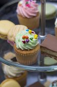Delicious Mini Cupcake With Green Icing