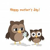 Mother's Day Owl
