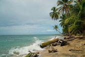 Caribbean coastline of Costa Rica