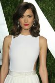 WEST HOLLYWOOD, CA - FEB 24: Rose Byrne at the Vanity Fair Oscar Party at Sunset Tower on February 2