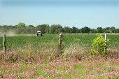 Tractor_field_2