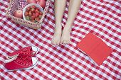 Young woman's feet on a checkered blanket with a picnic basket