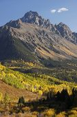 pic of mear  - Mount Sneffels Range with fall color - JPG