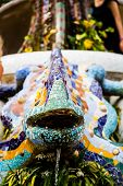 picture of gaudi barcelona  - Parc Guell Lizard Fountain Gaudi Barcelona - JPG