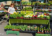 ESSLINGEN, GERMANY - APRIL 02,2014: Woman selling flowers at Market Square (Marktplatz) in Esslingen am Neckar near Stuttgar