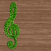 wooden background and green grass key symbol