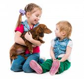 children playing with a red dachshund on white background