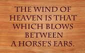 The wind of heaven is that which blows between a horse's ears - Arabian Proverb on wooden red oak ba