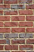 Brick Wall Background (vertical)