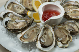 foto of oyster shell  - A platter of fresh organic raw oysters on ice at restaurant  - JPG