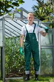Garden Worker Standing In Front Of Glasshouse