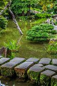 Peacefull Garden