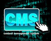 Content Management System Means World Wide Web And Websites