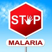 pic of malaria parasite  - Stop Malaria Showing Warning Sign And Danger - JPG