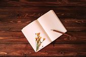 Blank open notebook, wooden pencil and dandelion on wooden background