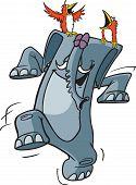 Happy pachyderm