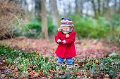 Cute Little Toddler Girl In A Red Coat Playing With Beautiful Snowdrop Flowers In A Spring Park