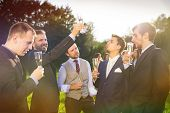 image of mating  - Groom with four happy groomsmen toasting at the wedding reception outside - JPG