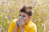 pic of rhinitis  - Boy with allergic rhinitis in the meadow - JPG