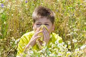 picture of rhinitis  - Boy with allergic rhinitis in the meadow - JPG