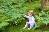 Sweet Curly Baby Girl Gathering Wild Raspberries In A Beautiful Pine Forest