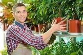 stock photo of greenhouse  - Portrait of a young man florist that cares for the flowers in the greenhouse - JPG